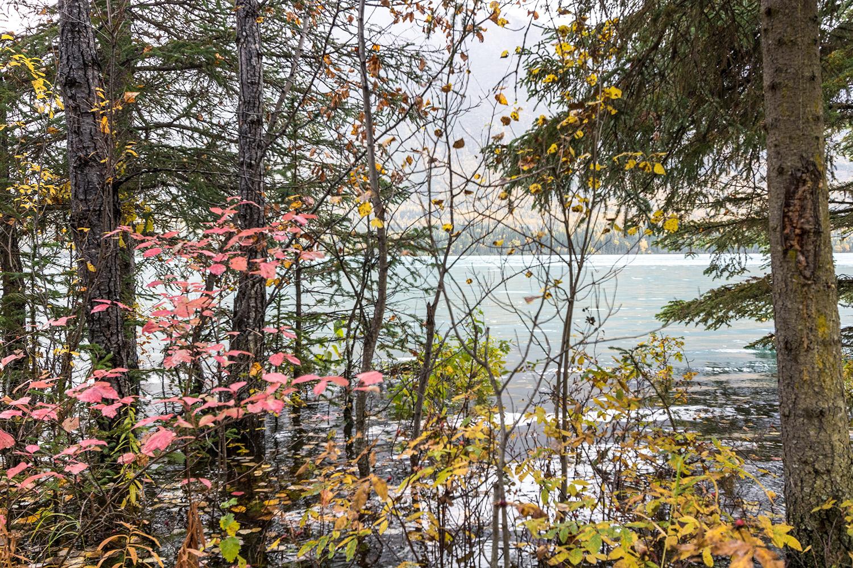 Summit-lake-to-Anchorage-22