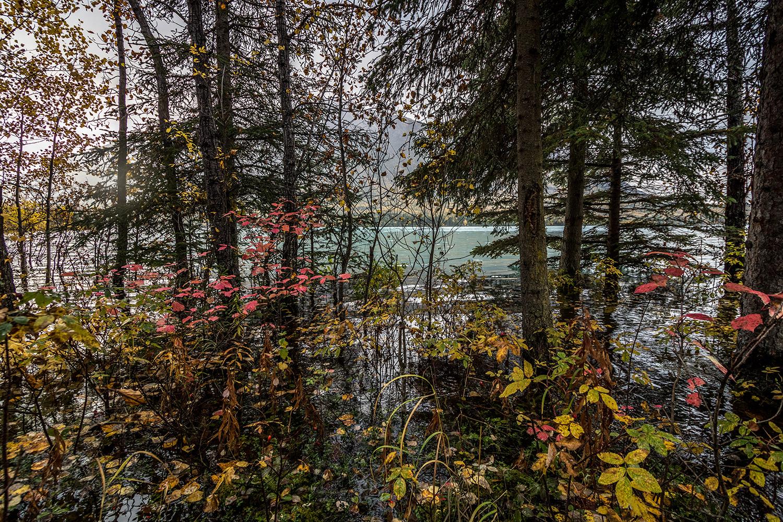 Summit-lake-to-Anchorage-23