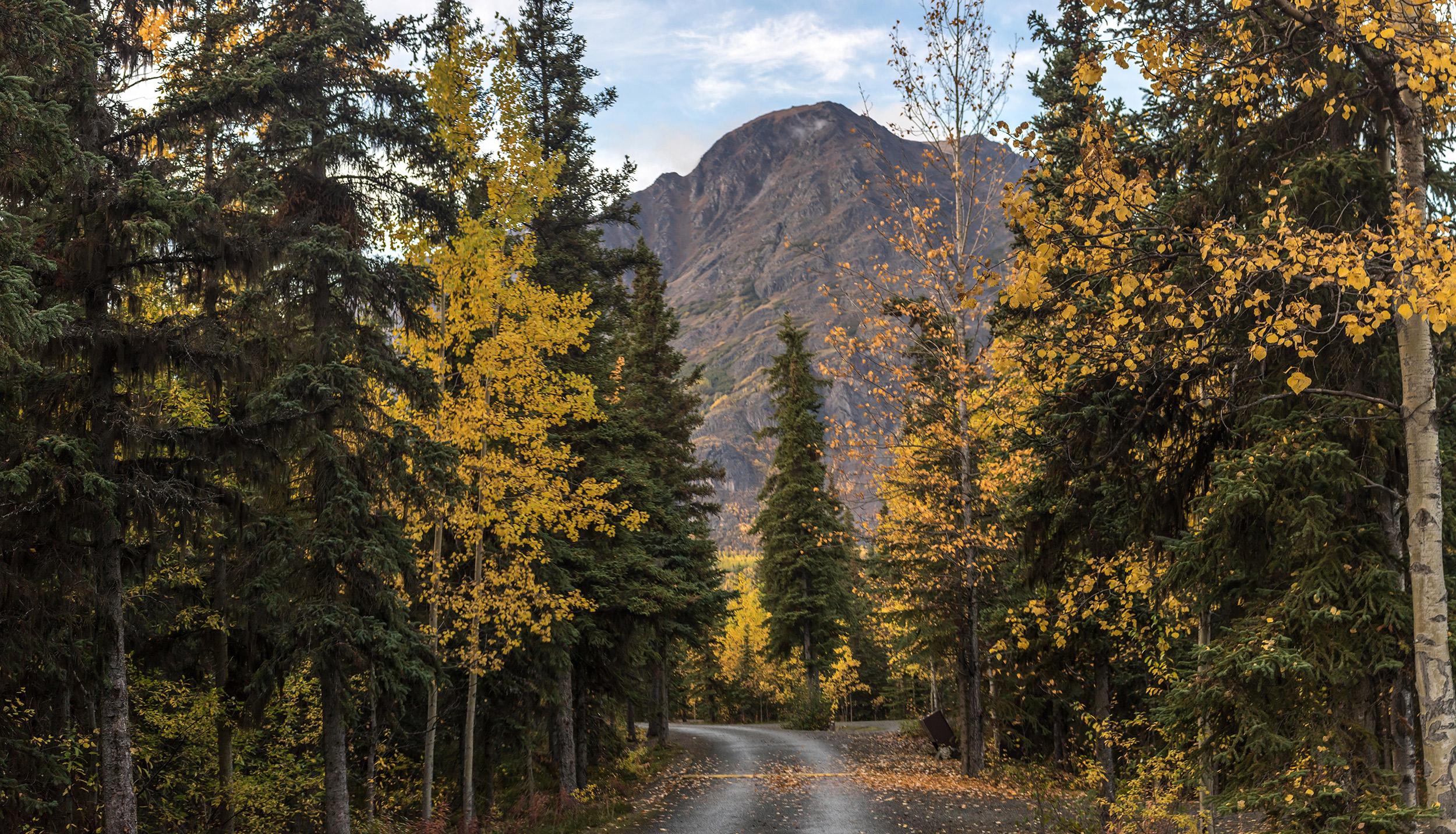 Summit-lake-to-Anchorage-56
