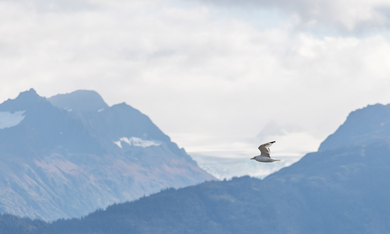 Summit-lake-to-Anchorage