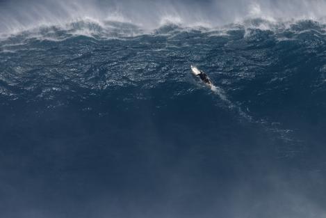 Jaws-2011-Bangerter-13