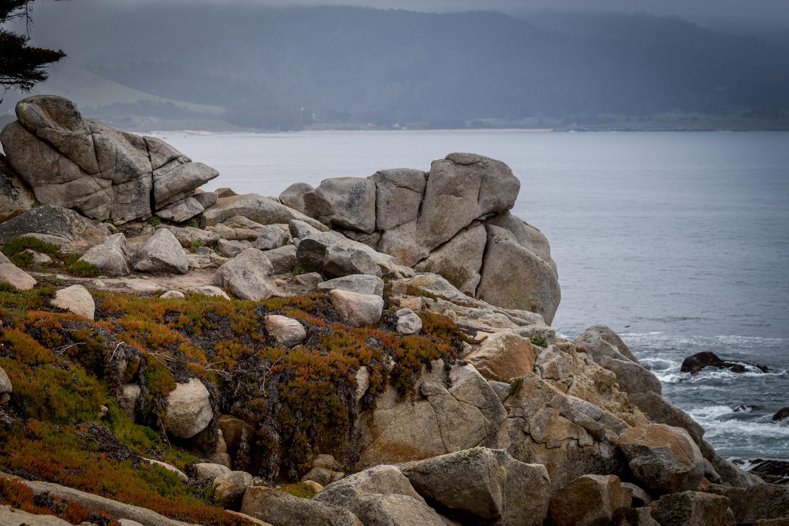 Carmel-seal rock