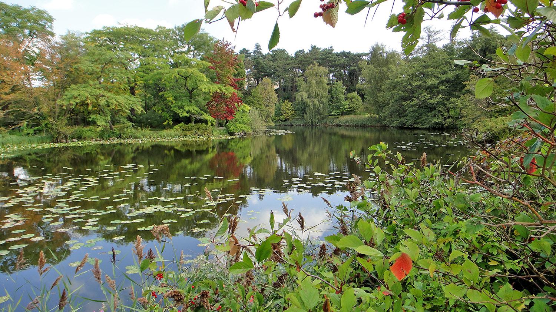 botanical-gardens-copenhagen