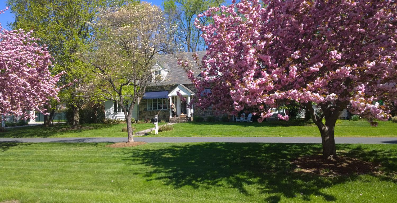 dorries-house-in-April.jpg