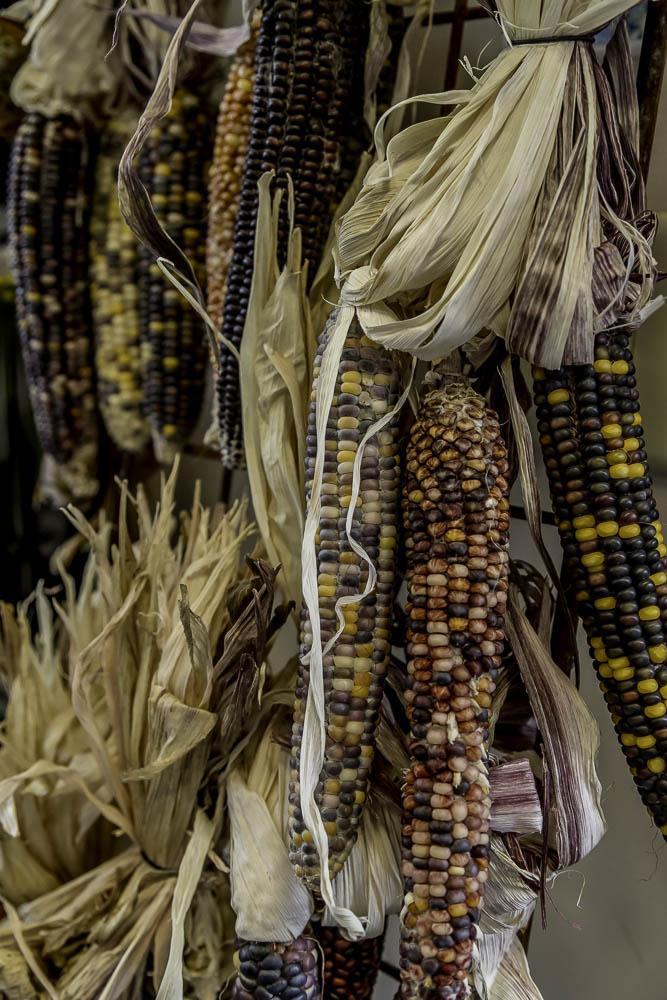Farmer's Market-6