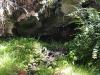 kula-botanical-gardens