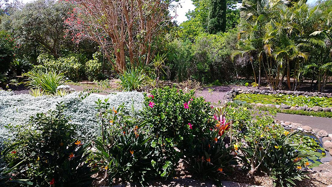 Enchanted Garden: Nuui's Garden And Enchanted Gardens