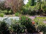 10-Enchanted-Gardens