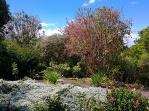 9-Enchanted-Gardens
