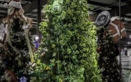 Maryland Festival of Tree-2