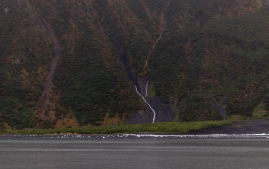 Seward-Fjords-81