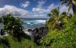Will-Brittany-East Maui