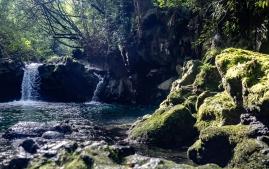 nahiku pool-falls