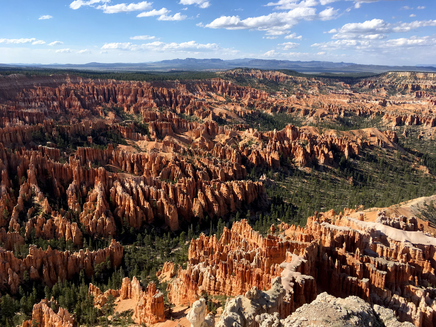 Bryce Canyon and a peek at Zion